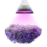 INHDBOX Vollspektrum Wachstum Tageslicht Pflanzenleuchte E27 36W LED Pflanzenlampe für Garten Gewächshaus Zimmerpflanzen Blüte Blume [Energieklasse A+++]