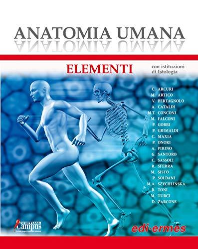 Zoom IMG-2 anatomia umana elementi con istituzioni