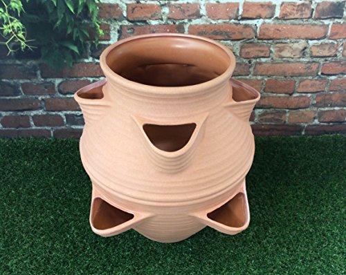 Multi uso jardín maceta terracota efecto \ perfecto para hierbas fresas y plantas
