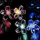 Luci Energia Solare Decorative Fiore di Ciliegio 50 LED