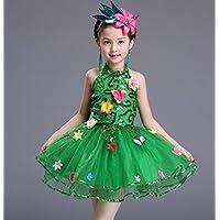 HUOFEINIAO-Abbigliamento da ballo Gonna Principessa Verde Pompon Dress Danza  Costumi Bambini Coro Fiori Gruppo 2729b4b6174f