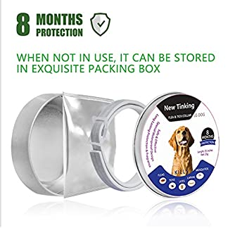 bloomma dog collar, pet tick flea mosquito collar for pet dog natural pest removing oil flea repellent collar,8 month protection Bloomma Dog Collar, Pet Tick Flea Mosquito Collar for Pet Dog Natural Pest Removing Oil Flea Repellent Collar,8 Month Protection 51WmVWL42IL