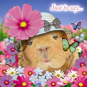 Guinea Pig 'Butterflies and Flowers' Just to say.... blank square greetings card