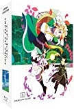 Sword Art Online - Arc 2 (ALO) - Edition Collector Limitée - Combo [Blu-ray] + DVD