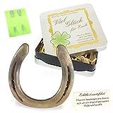 Geschenke mit Namen 1349 Echtes getragenes Glückshufeisen mit Widmung: Viel Glück für Euch Inklusive Echtheitszertifikat und 2 Echten Hufnägeln, Metall, Gold, 17 x 17 x 4.5 cm