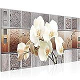 Bilder Blumen Orchidee Wandbild Vlies - Leinwand Bild XXL Format Wandbilder Wohnzimmer Wohnung Deko Kunstdrucke Braun 1 Teilig - MADE IN GERMANY - Fertig zum Aufhängen 204612a