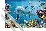 1art1 Poster + Hanger: Delfine Poster (91x61 cm) Verzaubertes Tropen-Meer Inklusive EIN Paar Posterleisten, Transparent