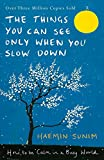 The Things You Can See Only When You Slow Down: How to be Calm in a Busy World (print edition)