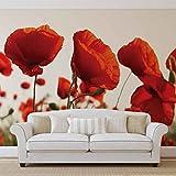 Blumen Mohnblumen Feld Natur - Forwall - Fototapete - Tapete - Fotomural - Mural Wandbild - (1639WM) - XXXL - 416cm x 25