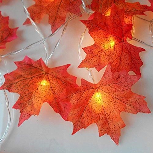 DOLDOA Ahornblatt Batterie-Kasten Lichterkette für Haus, Hochzeit, Weihnachten, Erntedankfest (4M – 40er LED, Rot)