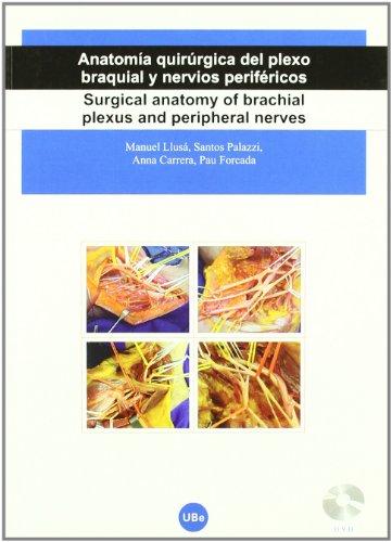 Anatomía quirúrgica del plexo braquial y nervios periféricos = Surgical anatomy of brachial plexus and peripheral nerves