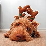 Rosewood Rentiergeweih für Hunde zu Weihnachten