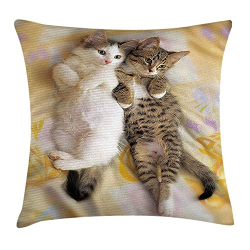 Jolly2T Funny Throw Pillow Cushion Cover, Kitten Siblings Lying Beside Sleepy Heads Cat Pet Animal Lovers Best Friends Image, Decorative Square Accent Pillow Case, 18 X 18 inches, Multicolor