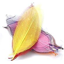 50pz Magnolia Naturali Foglio Di Scheletro Lascia Carta Scrapbook - Colore Misto