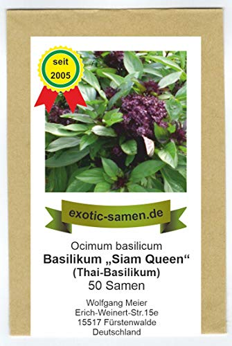 """Ocimum basilicum - Thai-Basilikum""""Siam-Queen"""" - 50 Samen"""