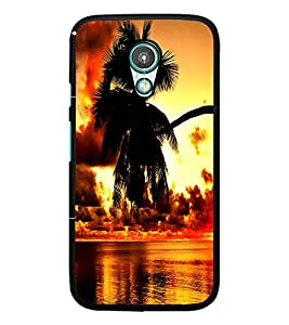 PrintDhaba Beautiful Nature D-1235 Back Case Cover for MOTOROLA MOTO G2 (Multi-Coloured)