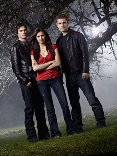 Vampire Diaries Customized 24x32 inch Silk Print Poster Affiche de la Soie/WallPaper Great Gift, Divers