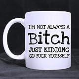 Fancy Top Special Funny IM NOT ALWAYS A B*TCH JUST KIDDING GO FUCKING YOURSELF 11OZ/100% Ceramic Custom Coffee/Tea Mug -