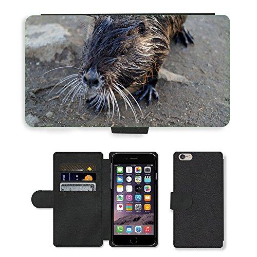 Just Mobile pour Hot Style Téléphone portable étui portefeuille en cuir PU avec fente pour carte//m00138475nutria bassin Animal Sauvage Cub//Apple iPhone 6Plus 14cm