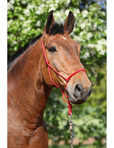 Natural Horsemanship Rope Halter Headcollar For Pat Parelli Horse Training Method (Extra Full/Warmblood, Red)