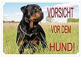 CRAZY FAMILY SHOP Das Schild 'Vorsicht VOR DEM Hund' vom Gate Rottweiler Größe: 30 x 21,5 cm