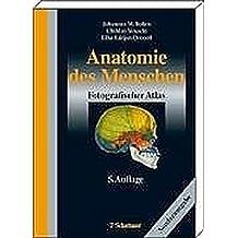 Amazon.es: atlas de anatomia yokochi