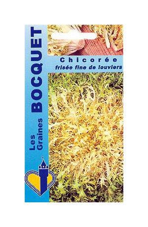 Les Graines Bocquet - Graines De Chicorée Frisée Fine De Louviers - Graines Potagères À Semer - Sachet De 4Grammes