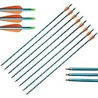 """ZSHJG 30 Pulgadas Flechas de Aluminio Spine 500 Flecha de Caccia con Punta de Flecha y 3"""" Caucho Plumas para Arco Compuesto y Arco Recurvo Tiro con Arco Flecha de Objetivo (12pcs)"""