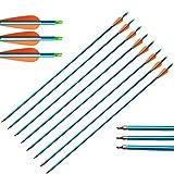 ZSHJG 30 Pulgadas Flechas de Aluminio Spine 500 Flecha de Caccia con Punta de Flecha y 3' Caucho Plumas para Arco Compuesto y Arco Recurvo Tiro con Arco Flecha de Objetivo (6pcs)