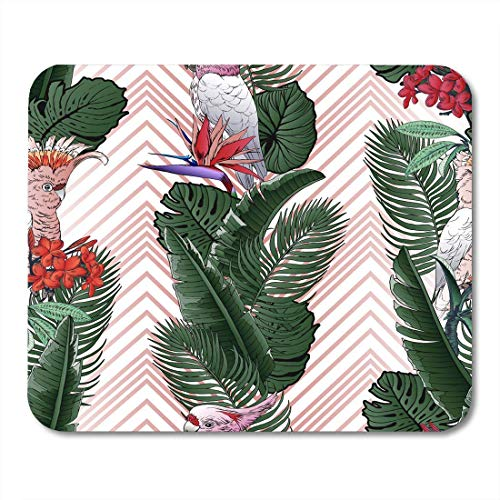Whecom Mauspad Gaming Colorful Tropical Pattern Leaves Palm Tree Modern Graphics Parrot Cockatoo Bird in Paradise Plumeria Gaming Mauspad for Notebooks,Desktop Computers Office Supplies -