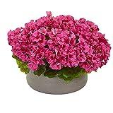 Nearly Natural 8193-BU Geranie Kunststein Pflanzgefäß UV-beständig (innen und aussen) Seidenpflanzen, rosa