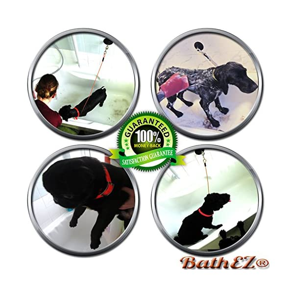 BathEz Dog Durable Bathing Cable Tub Restraint with Top Performance Strong Suction Cup and Collar 2