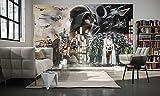 """'komar 028della DVD4Star Wars carta da parati in tessuto non tessuto di""""Star Wars Collage, dimensioni 400x 250cm (larghezza x altezza), 4tracce, compreso il materiale per, bunt"""