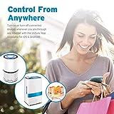 Etekcity WLAN Smart WiFi Plug Steckdose fernbedienbar für Amazon Alexa, Google Home und IFTTT, Kein Hub erforderlich, mit App Steuerung und Verbrauchsanzeige Timer - 5