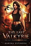 The Last Valkyrie: An Urban Fantasy Novel