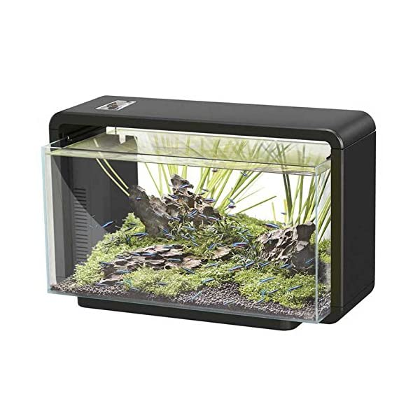 SuperFish Home 25 Litre Aquarium (Black) – Including LED Lights and Internal Filter