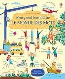 Mon grand livre illustré - Le monde des mots