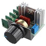 Best reguladores de voltaje - haljia Motor de 220V 2000W Velocidad controlador SCR Review