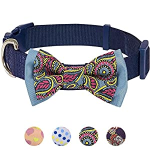 Dieses Halsband ist durch seinen zeitlosen klassischen Stil eins der beliebtesten bei unseren Editoren. Darf ich Ihnen erklären warum wir schon beim ersten Blick auf dieses Hundehalsband-Modell geschmolzen sind? Dieses Stück ist ein Designer-Hundehal...