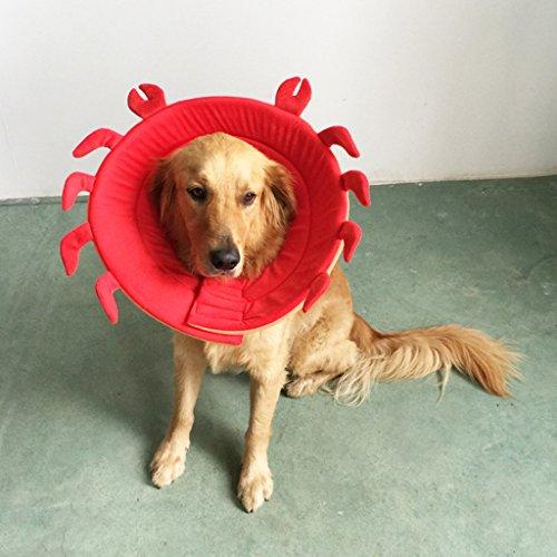KESOTO Cane Collare Elisabettiano Collo Decorazione per Cani, Cucciolo - Rosso, XL