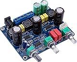 Yeeco Original-TPA3123 2.1 Auto-Digital-Verstärker-Brett DC 12-24V Super Bass 20Wx2 Ausgang DIY...