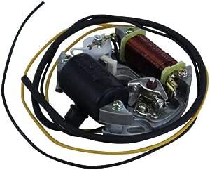 Hercules Puch Lichtmaschine Zündung 6 Volt 17 Watt Prima 2 3 4 5 S M Mofa Moped Auto