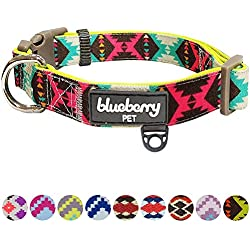 Blueberry Pet Soft & Comfy Vintage Tribal Pattern Adjustable Neoprene Padded Dog Collar in Extravagant Green, Large