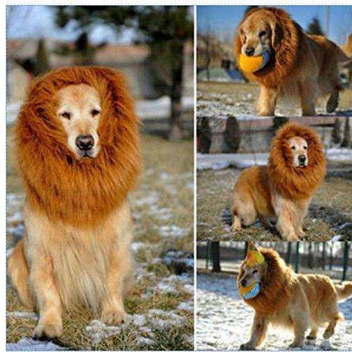 ähne Kostüm für große Hunde Pet Festival Kleidung mit Ohr (Dunkelbraun mit Ohr) (Golden Retriever-kostüm)