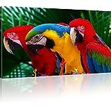 Kunstlab Bilder Ara Papageien Rot Geld Blau Leinwandbild Tiere Bild auf Leinwand Vogel Wandbild - 120x70 cm 1-Teilig