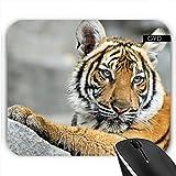 Mousepad - Tiger_2014_1002 by JAMFoto