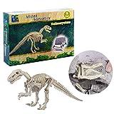 Lommer Creativo Scavo Fossile Dinosauri Giocattolo Archeologia Scavo Paleontologia Dinosauri Discovery Educativo Giocattolo per Bambini (Deinonychus)