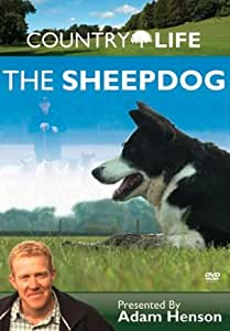 Country Life: The Sheepdog [DVD]