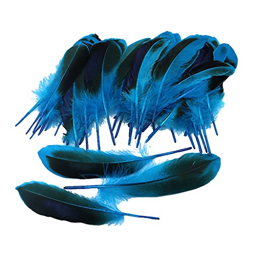 MagiDeal 50er Set Ente Feder DIY Hochzeit Federn Schmuckfedern Bastelfedern Zierfedern für Kostüme Hüte Kleider Zuhause Dekor DIY - Blau
