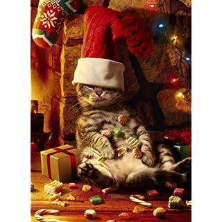 Avanti Christmas Cards, Too Many Treats, 10-Count by Avanti Press
